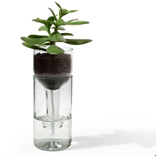 Self Watering Bottle
