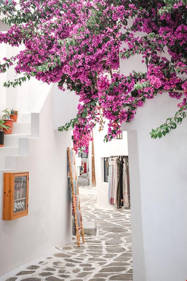 Hintergrund 'Griechenland'