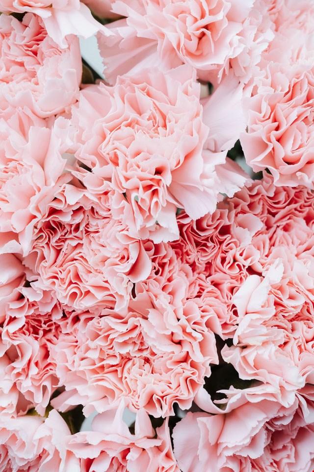 Hintergrund 'Blumen'